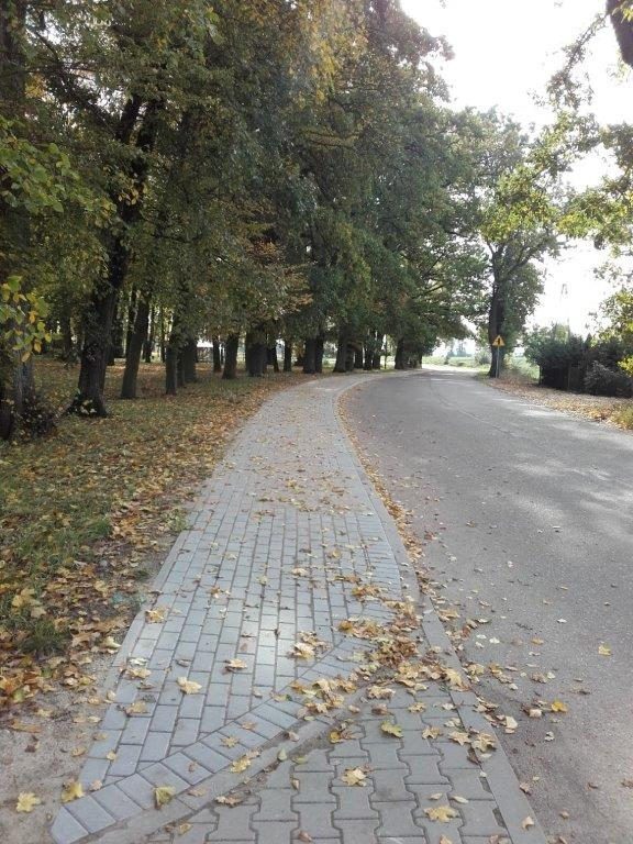 Droga przez Frącę, po lewej jesienny park, na środku ciąg chodnika z kostki brukowej