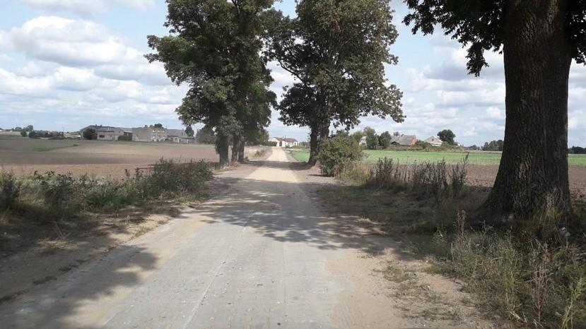 Droga pomiędzy polami uprawnymi wykonana z płyt jumbo