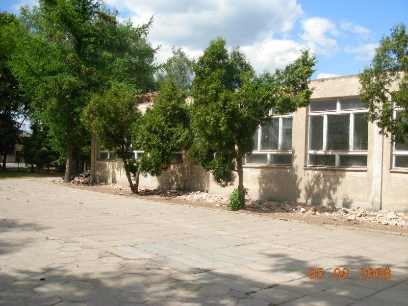 Pawilon ZKiW oraz drzewa rosnące blisko ścian budynku